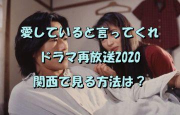愛していると言ってくれドラマ再放送2020関西で見る方法は?