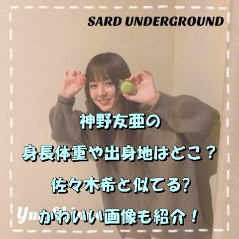神野友亜の身長体重や出身地はどこ?佐々木希と似てるかわいい画像も紹介!